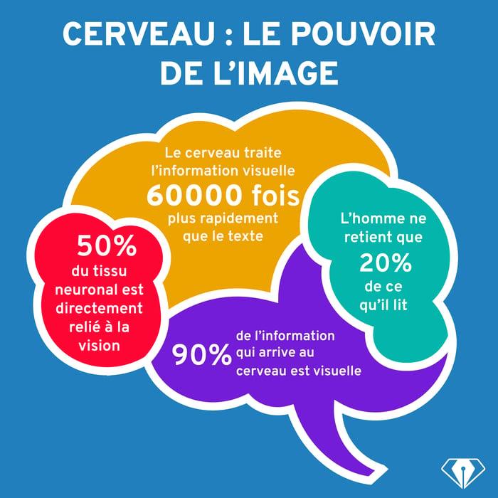 CERVEAU-pouvoir_image.png