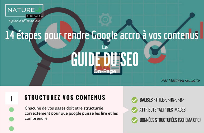 Infographie-optimisation-SEO-ND-closeup.png
